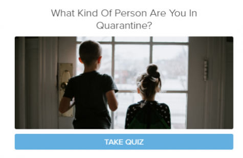 What type of quarantine personality are you?
